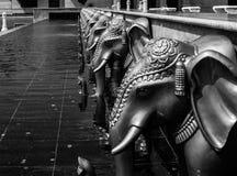 Elefanti in una fila Fotografia Stock Libera da Diritti