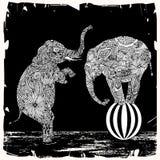 Elefantillustration Royaltyfria Bilder