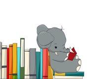 Elefantläsning Royaltyfri Bild