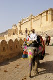 elefantmahout Royaltyfri Fotografi