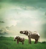 Elefantmoder och barn royaltyfri bild