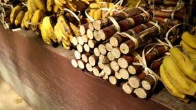 Elefantnahrung, Bananen und Zuckerrohre lizenzfreie stockfotografie