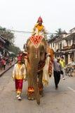 Elefantprozession für Lao New Year 2014 in Luang Prabang, Laos Lizenzfreies Stockbild