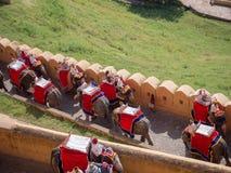 Elefantritt i bärnsten, Jaipur royaltyfri fotografi