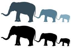 Elefantschattenbild - großes Säugetier der wild lebenden Tiere in Afrika und in Asien vektor abbildung