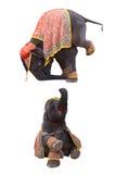 elefantshow Royaltyfri Fotografi