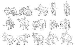 Elefantshow och utbildning med mahouten stock illustrationer