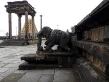 Elefantskulptur på den Chenna Keshava templet, Indien royaltyfri fotografi