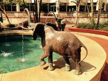 Elefantspringbrunn Arkivbild