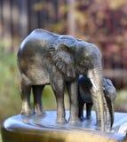 Elefantspringbrunn på Lincoln Park Zoo Royaltyfria Foton