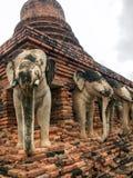 Elefantstatyer i forntida Stupa i Sukhothai Thailand Royaltyfri Fotografi