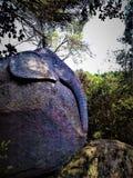 Elefantsten arkivbilder
