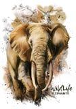 Elefantvattenfärgmålning royaltyfri illustrationer