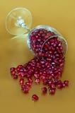 Eleganccy granatowowie rozlewa od wina szkła złota tła Obrazy Royalty Free