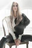 eleganccy piękno blondyny Obraz Royalty Free