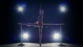 Elegance ballerina near the barre. smoke. slow stock video footage
