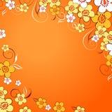 Elegance Colorful Texture. Stock Photos