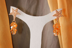Elegance Earings. Hanged on a white hanger Royalty Free Stock Image