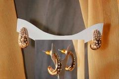 Elegance Earings Stock Photography