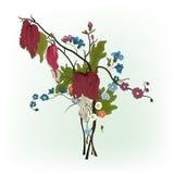 Elegance floral compozition. Elegance floral composition on white background Royalty Free Stock Photos