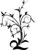 Elegance floral design tattoo Stock Image