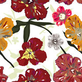Elegance floral pattern Royalty Free Stock Photos