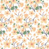 Elegance floral summer or spring pattern template. Seamless pastel vintage pattern for decorating textile, paper or any background. Different colors are Stock Images