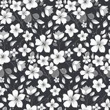 Elegance floral summer or spring pattern template. Seamless pastel vintage pattern for decorating textile, paper or any background. Different colors are Royalty Free Stock Photo