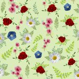 Elegance flowers pattern background. Beautiful flower with watercolor illustration style. Stock Image
