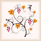 Elegance grape vine with flying bird. Royalty Free Stock Photos