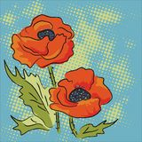 Elegance illustration with red poppies isolated. On blue background. Color design elements Vector Illustration