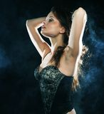 Elegance lady in the lingerie Stock Photography