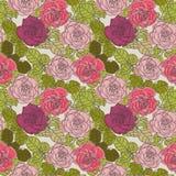 Elegance roses background Stock Photography