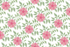 Elegance Seamless pattern with floral background Royalty Free Stock Photography