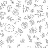 Elegance Seamless pattern with flowers for coloring book Stock Photo