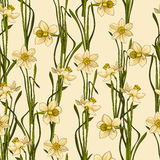 Elegance Seamless pattern with flowers daffodils, vector floral illustration in vintage style. Biege background Royalty Free Stock Photography