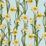 Elegance Seamless pattern with flowers daffodils, vector floral illustration in vintage style. Blue background Stock Photo