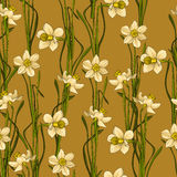 Elegance Seamless pattern with flowers daffodils, vector floral illustration in vintage style. Brown background Stock Images