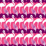 Elegance seamless pattern with pink flamingo and wings Royalty Free Stock Photos