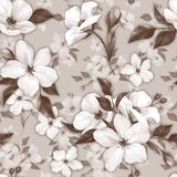 Elegance seamless pattern with white apple flowers. Monochrome background stock illustration