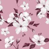 Elegance seamless pattern with white apple flowers. On pink background stock illustration
