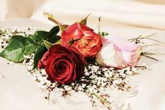 Elegance, symbols royalty free stock image