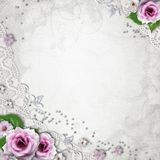 Elegance wedding background. Elegance silver wedding background with lace and roses Stock Images