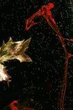 Elegancia Imagen de archivo libre de regalías