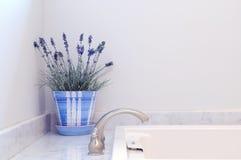 Elegancia del cuarto de baño Foto de archivo