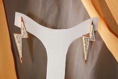 Elegancia Earings Fotografía de archivo libre de regalías