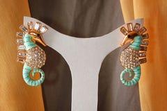 Elegancia Earings Fotos de archivo libres de regalías