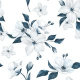 Elegancja bezszwowy wzór z białymi jabłko kwiatami 9 royalty ilustracja