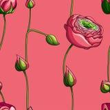 Elegancja koloru peoni Bezszwowy wzór na różowym tle, royalty ilustracja