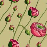 Elegancja koloru peoni Bezszwowy wzór na zielonym tle, ilustracji